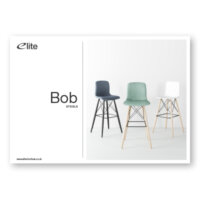 Bob Flyer Front Cover