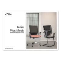 Team Plus Mesh Flyer Front Cover