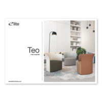 Teo Flyer Front Cover